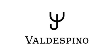 Distribuidor Valdespino en Salamanca